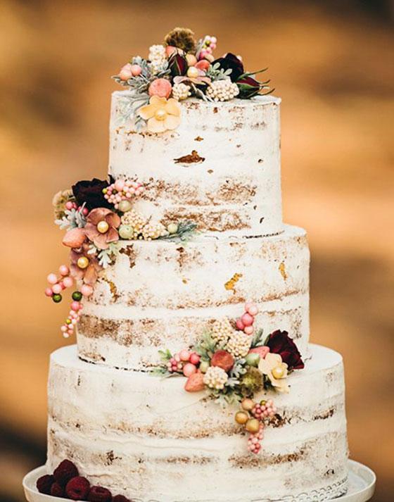torta_nuda_